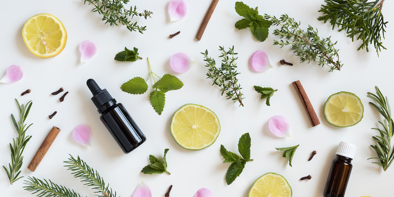 Aromatherapy New Craze Or Age Old Remedy Blomera Essential Oils